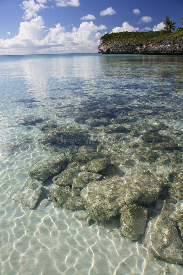 Олеандр садовничает seascape 2 стоковые фотографии rf