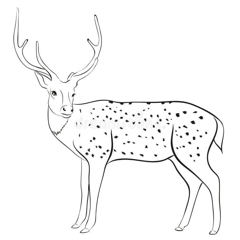Олени иллюстрация вектора