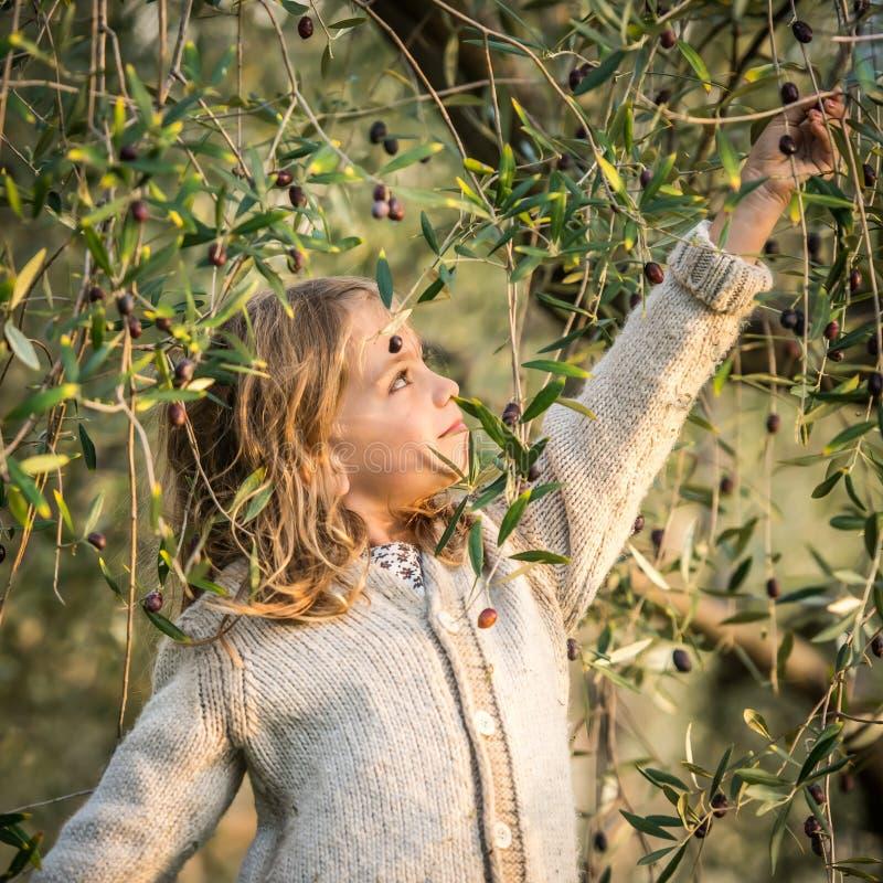 Оливки рудоразборки маленькой девочки стоковая фотография rf