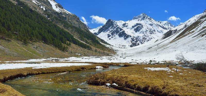 долина весны стоковое фото rf
