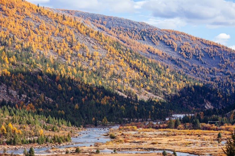 долина плато chuanxi стоковая фотография rf