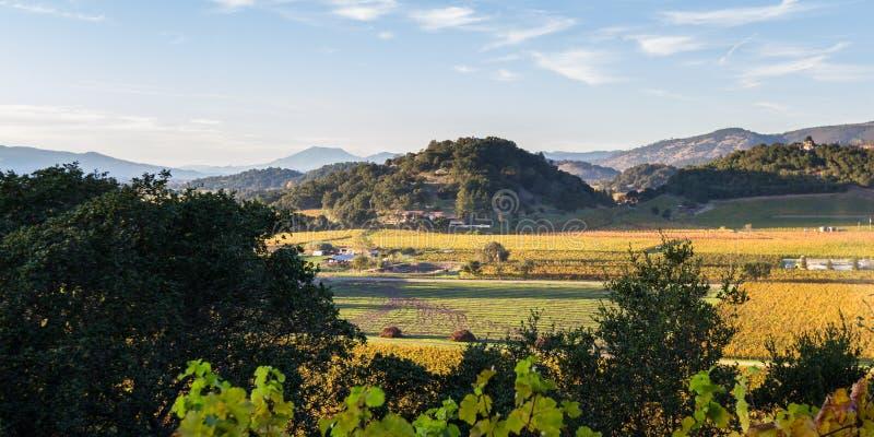 долина napa california стоковое фото
