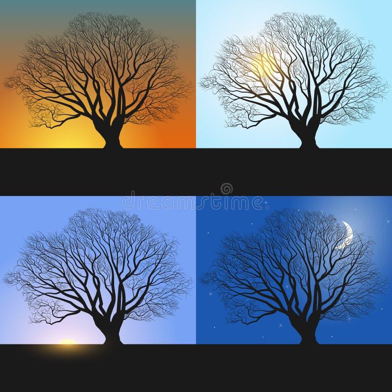 Одиночное дерево, знамена показывая последовательность дня - утро, полдень, вечер и ноча иллюстрация вектора