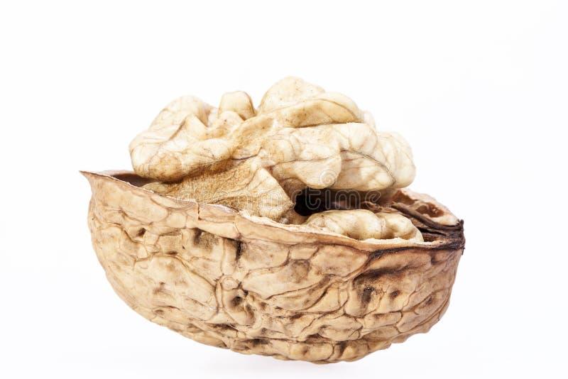 Одиночный грецкий орех при половинная ореховая скорлупа изолированная на белой предпосылке стоковые фото