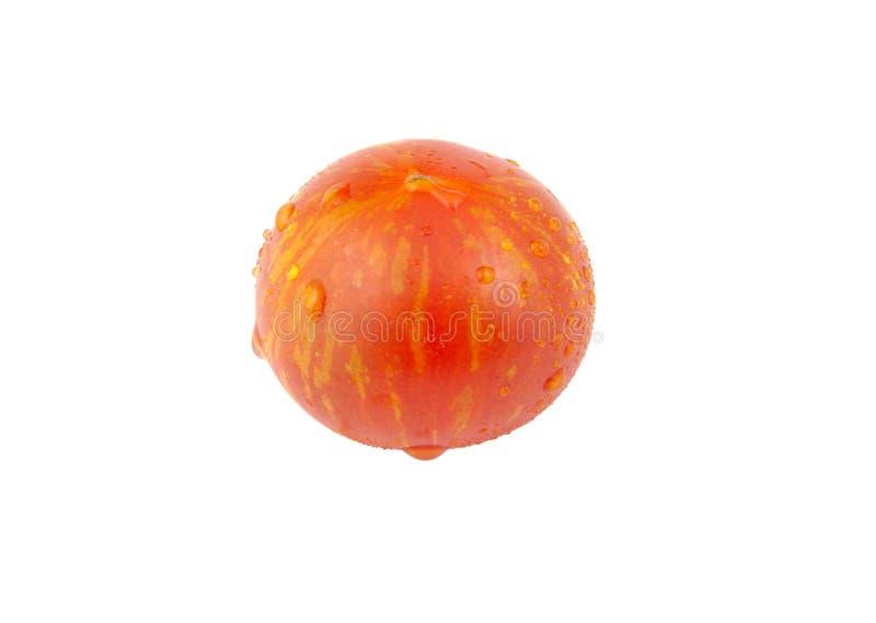 Одиночный томат вишни на белой предпосылке стоковая фотография rf