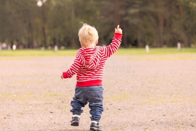 Один малыш года бежать в парке осени задний взгляд стоковое изображение