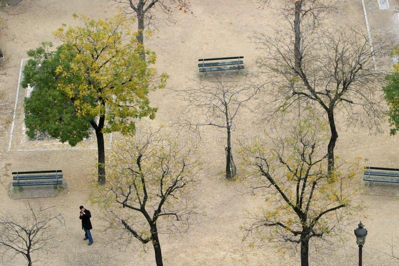 один парк стоковая фотография rf