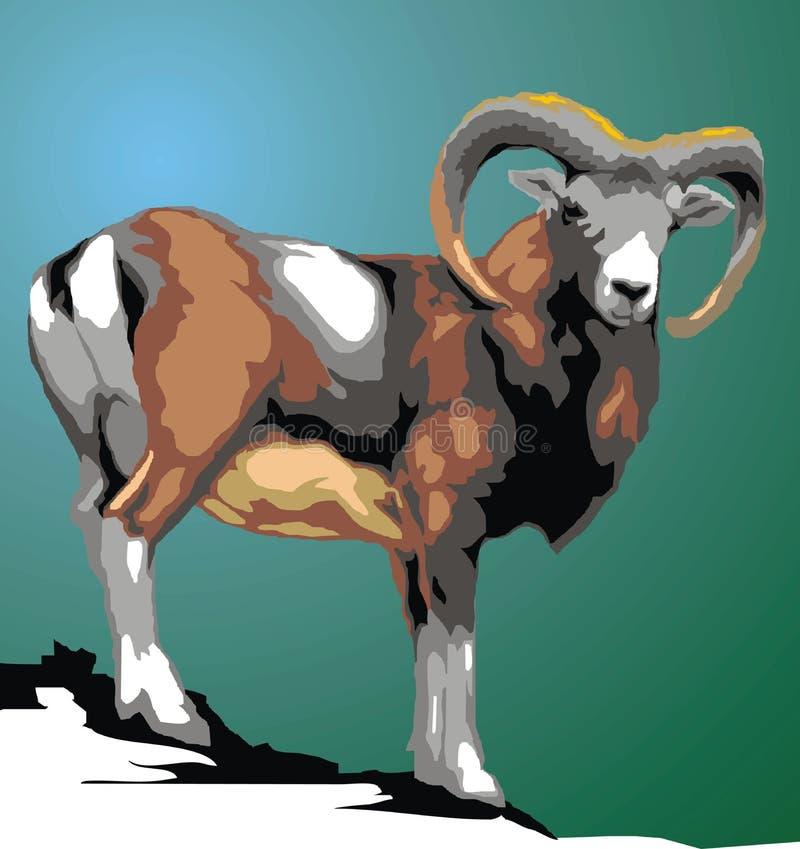 Одичалое животное mouflon иллюстрация штока