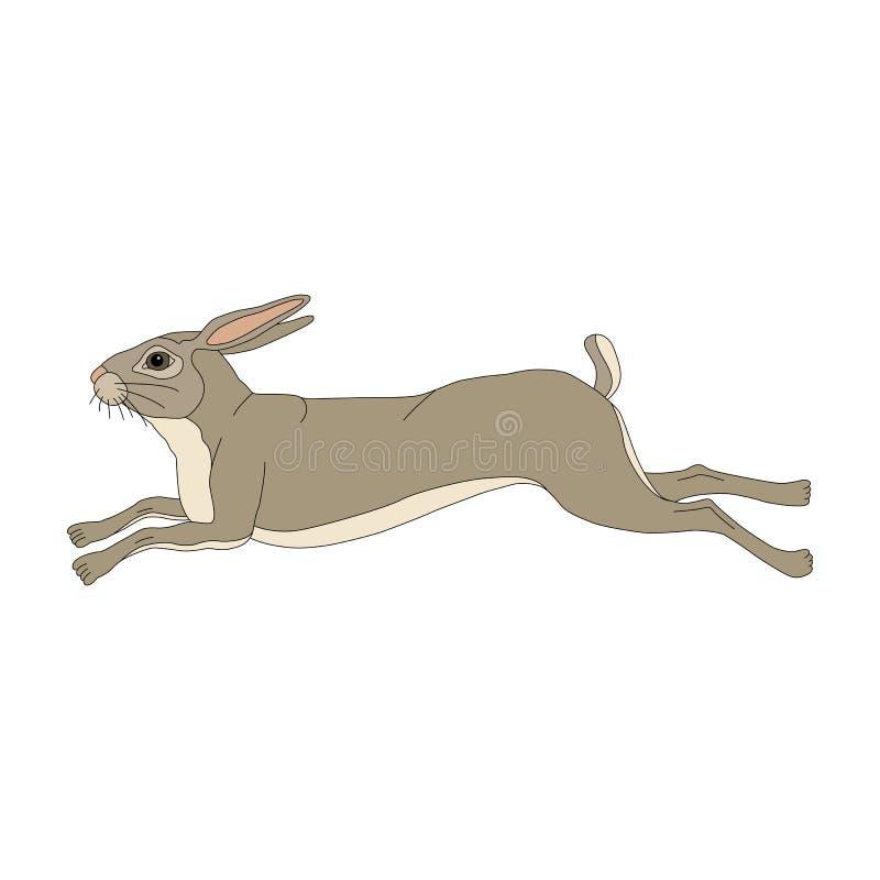 Зайчик бежит картинка для детей на прозрачном фоне