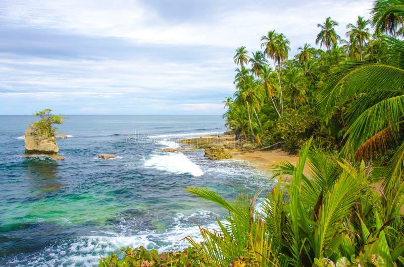 Одичалый пляж Мансанильо в Коста-Рика стоковая фотография