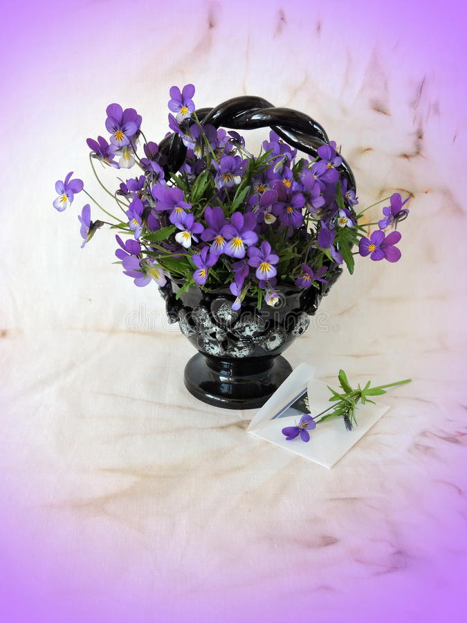 Одичалый pansy в вазе стоковое фото rf