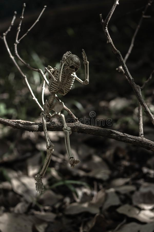 О мой бог скелет стоковые изображения rf