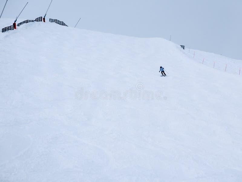 Одни лыжники стоковое фото