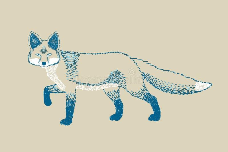 Однокрасочный чертеж лисы иллюстрация вектора