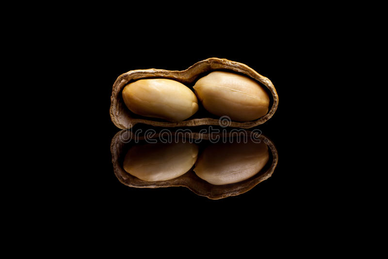 Одно слезло арахис изолированный на черной предпосылке стоковые фото