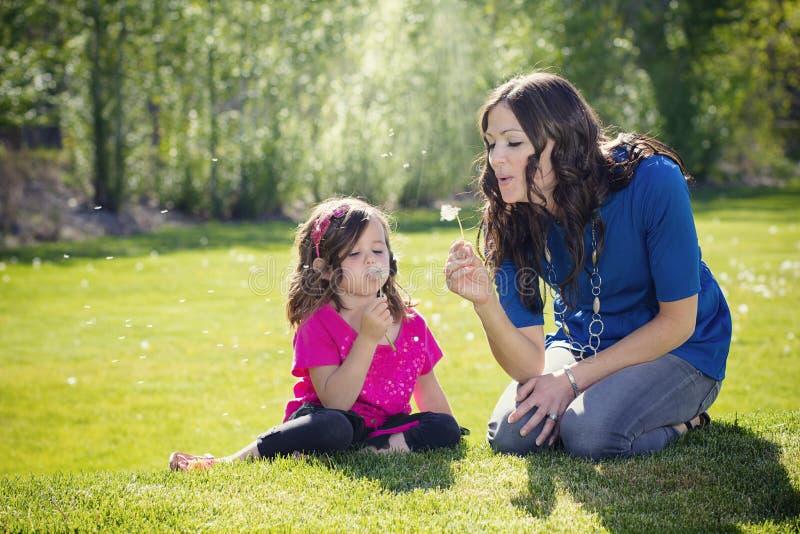 Одуванчики матери дуя с дочерью стоковая фотография