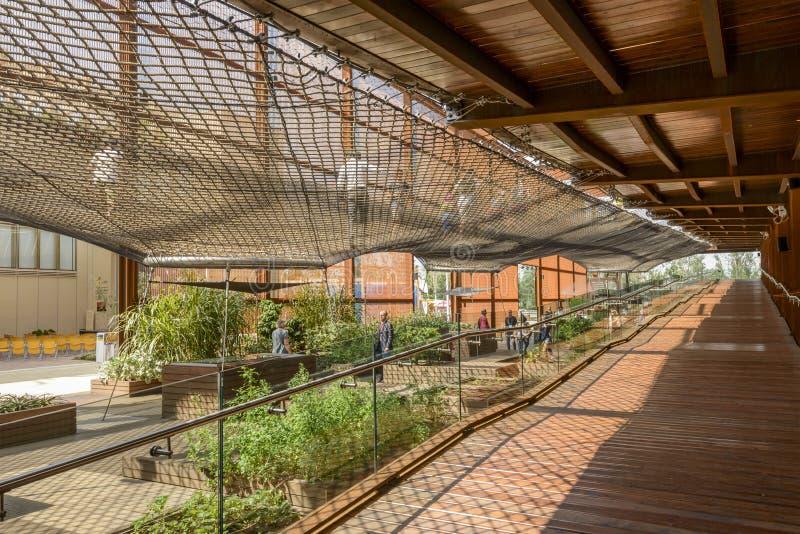 Павильон Бразилии деревянной прогулки внутренний, милан 2015 ЭКСПО стоковая фотография