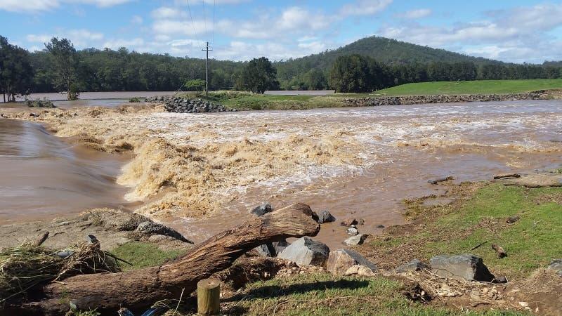 Паводковые воды Oxenford, Квинсленд, Австралия стоковые изображения