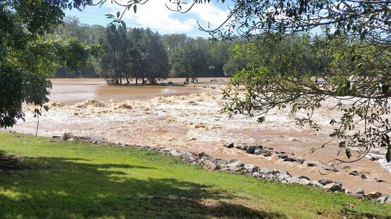Паводковые воды Oxenford, Квинсленд, Австралия стоковое фото rf