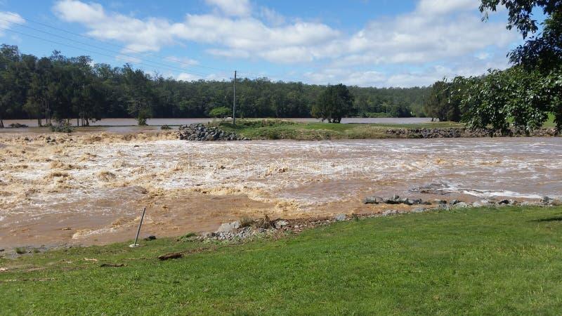 Паводковые воды Oxenford, Квинсленд, Австралия стоковые фото