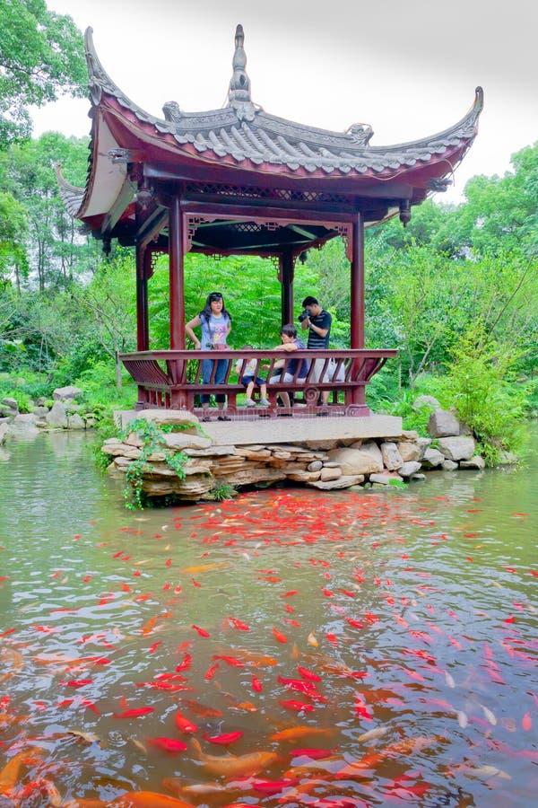 Пагода сада и красные рыбы стоковое изображение