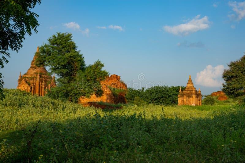 Пагода Bagan историческая стоковое фото