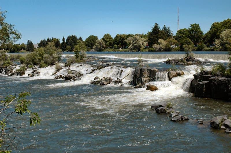 падает водопад змейки реки Айдахо стоковое фото
