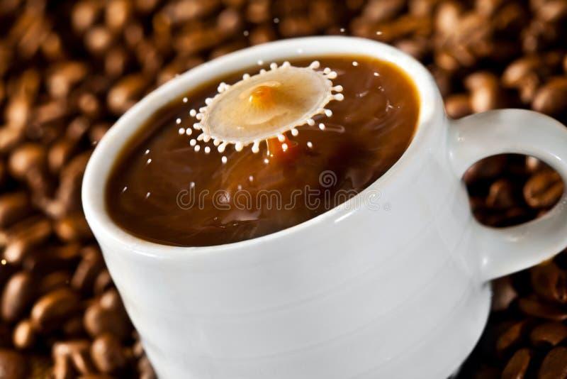 Падать падения молока кофе стоковое фото rf