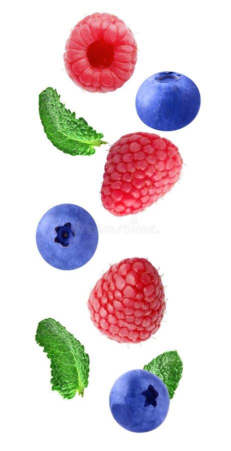 Падая свежие ягоды изолированные на белой предпосылке стоковая фотография