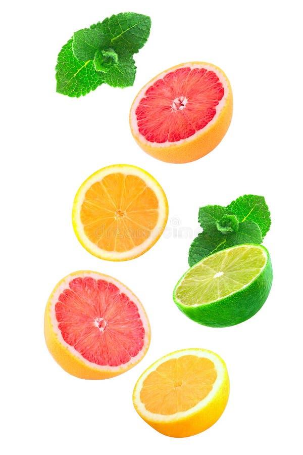 Падая части мяты, лимона и известки изолированных на белизне стоковые фото
