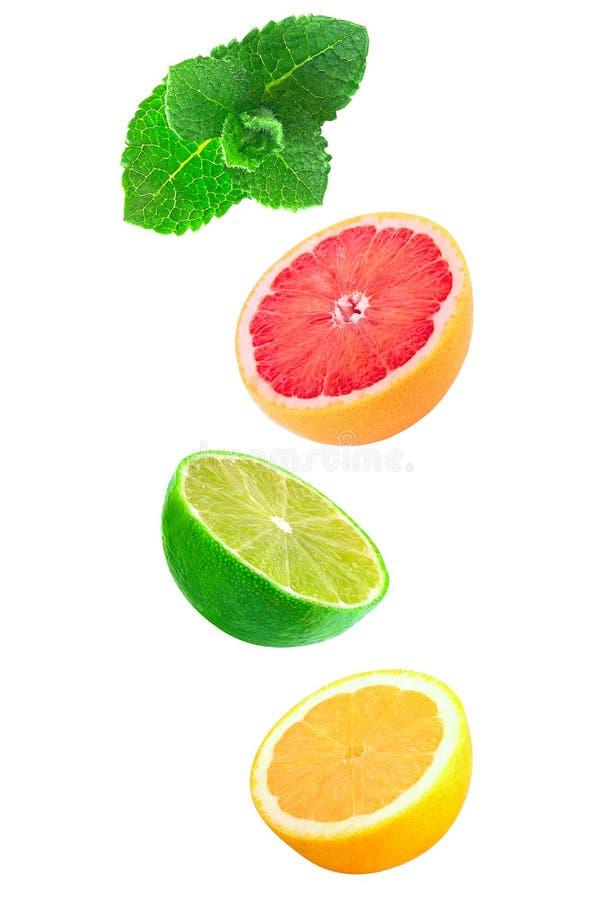 Падая части мяты, лимона и известки изолированных на белизне стоковые изображения rf