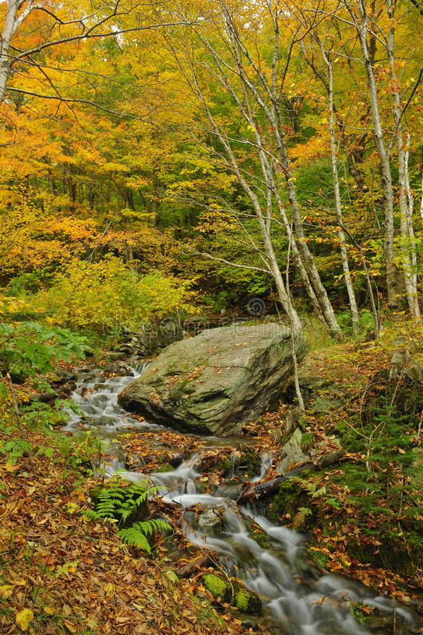 падение Вермонт стоковая фотография