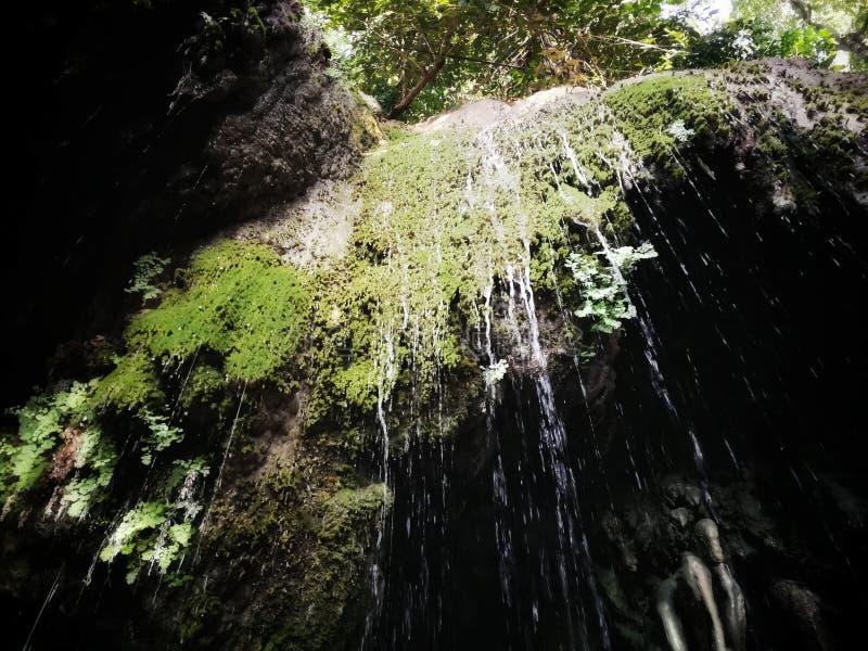 Падение воды Nuture стоковое фото rf