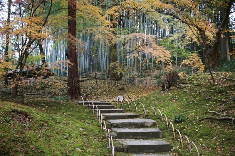 падение в резидентов положения виска Konkai Komyoji стоковая фотография rf