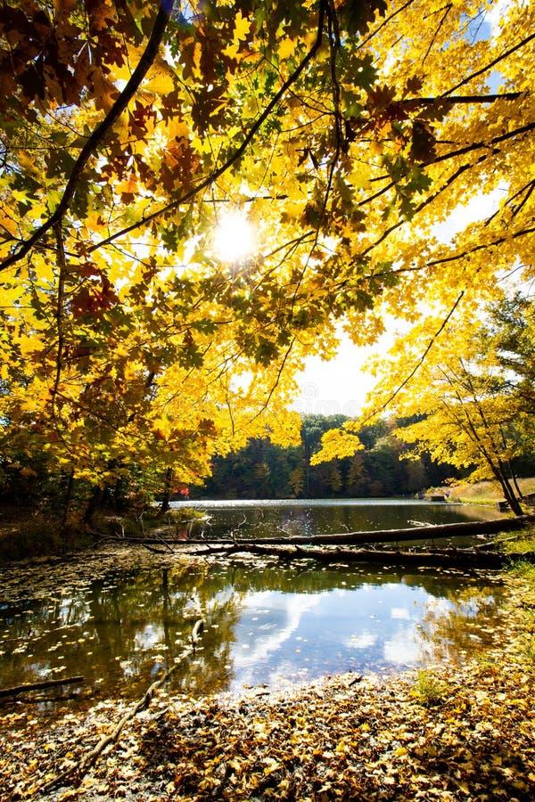 Падение дальше строит глазки парк штата озеро, Brown County, Индиана стоковое фото rf