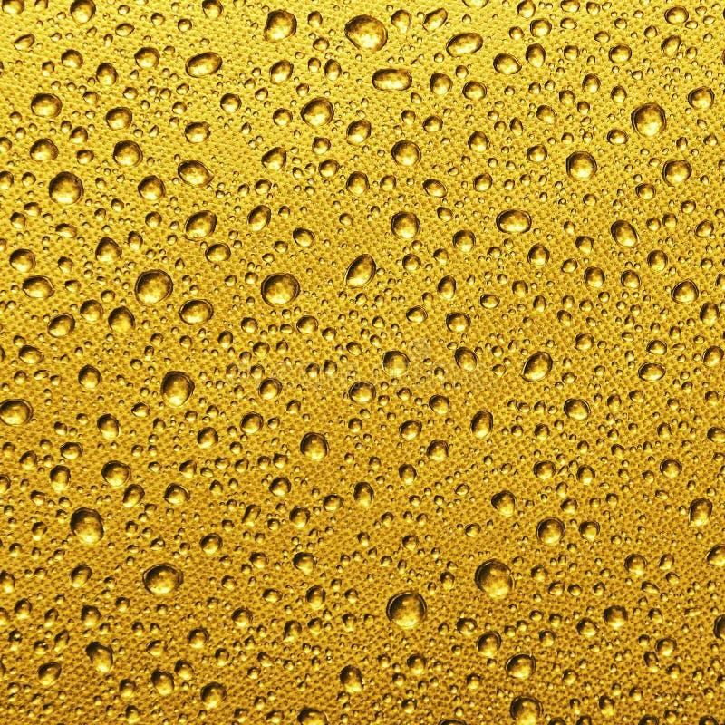 Падение золота воды стоковые изображения rf