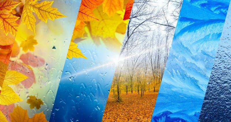 Падение и зима, концепция прогноза погоды иллюстрация штока