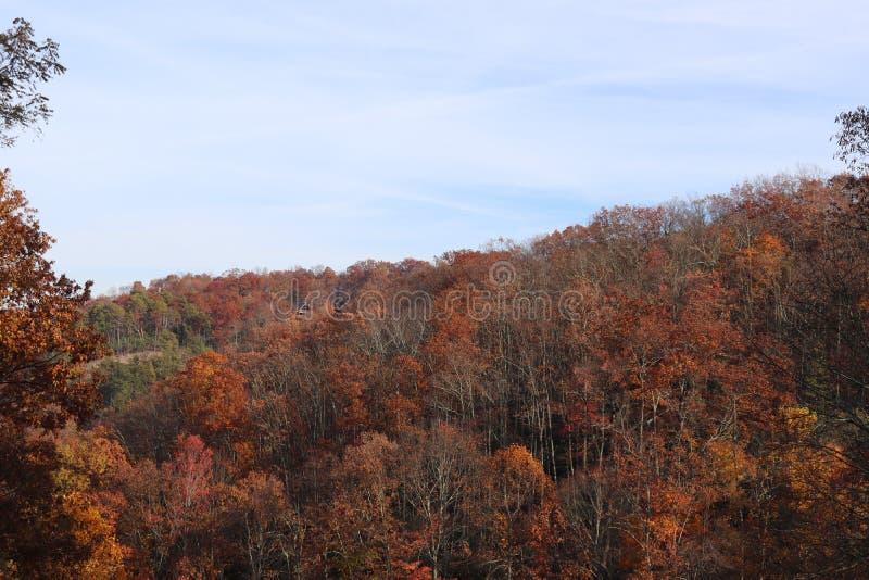 Падение красит горы Smokey стоковое фото rf