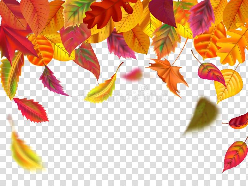 Падение листьев осени Падая запачканные лист, осеннее падение листвы и ветер поднимают желтыми вектор изолированный листьями иллюстрация штока