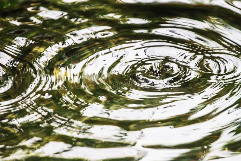 Падение упало на пульсацию поверхностной воды воды розово, которая как предпосылка стоковые фотографии rf