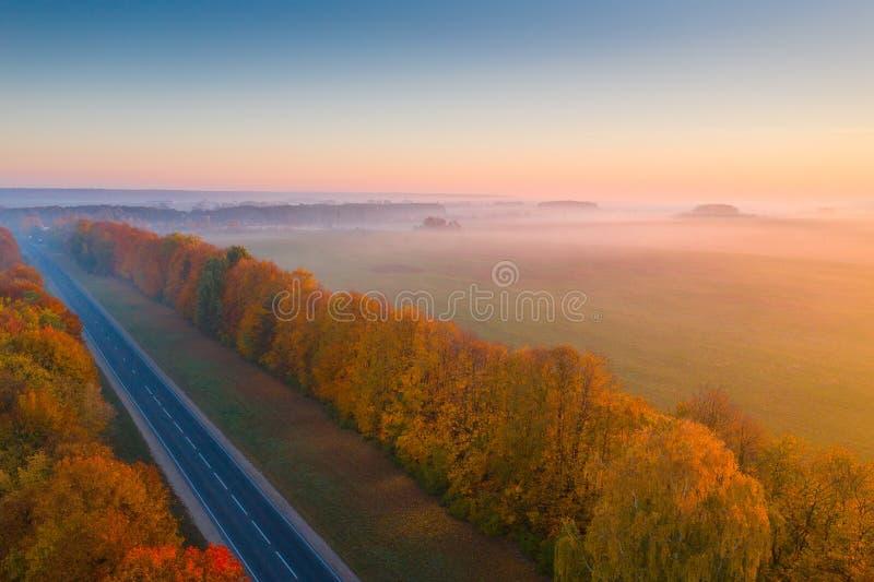 падение Утро осени стоковая фотография rf