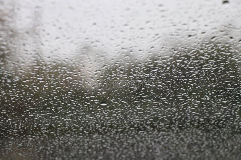 Падения воды на лобовом стекле автомобиля стоковое изображение