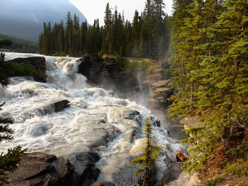 Падения, канадские скалистые горы, сценарные ландшафты стоковые фотографии rf