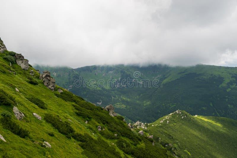 Падения сильного тумана на горы стоковая фотография rf