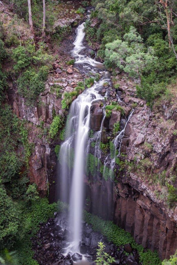 Падения Dagg, водопад, главный национальный парк ряда, Квинсленд, Австралия, март 2018 стоковая фотография rf
