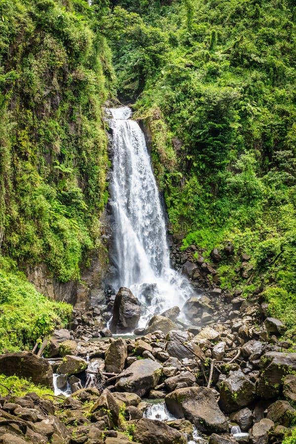 Падения Trafalgar, известный водопад в Доминике, Вест-Индии стоковое изображение rf