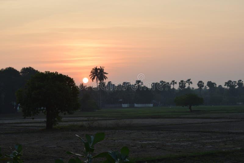Пади, который хранят с заходом солнца в деревне стоковое фото