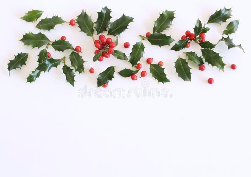 Падуб рождества с красными ягодами Традиционное праздничное украшение Ветвь падуба с красными ягодами на белой таблице стоковое изображение