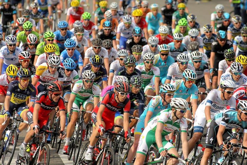 Пакет велосипедистов стоковое изображение rf