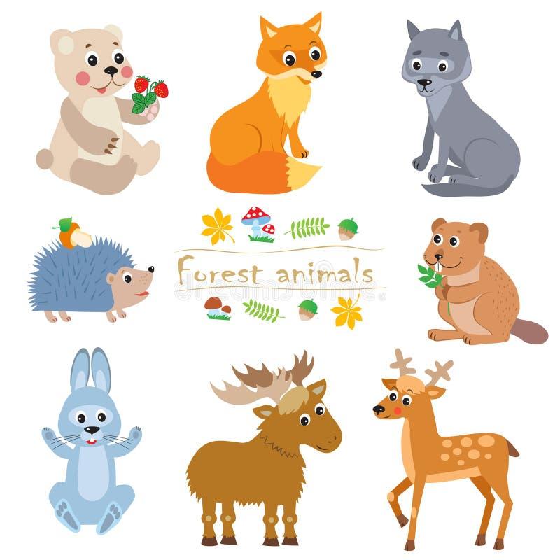 Пакет животных леса шаржа Милый комплект вектора иллюстрация вектора